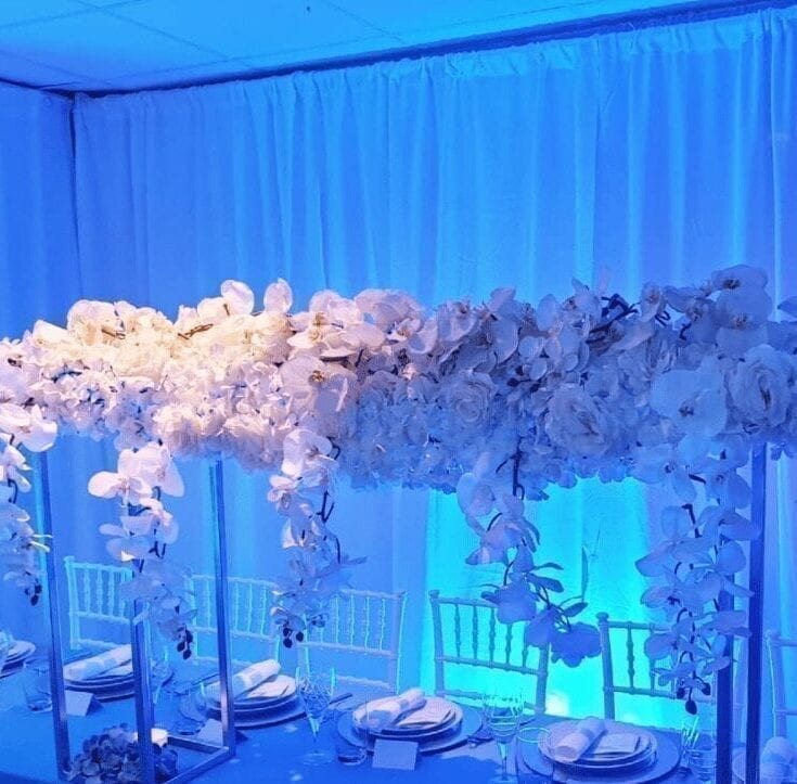 010A Sky flower white productfoto